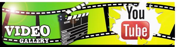 6-videogallery-copia